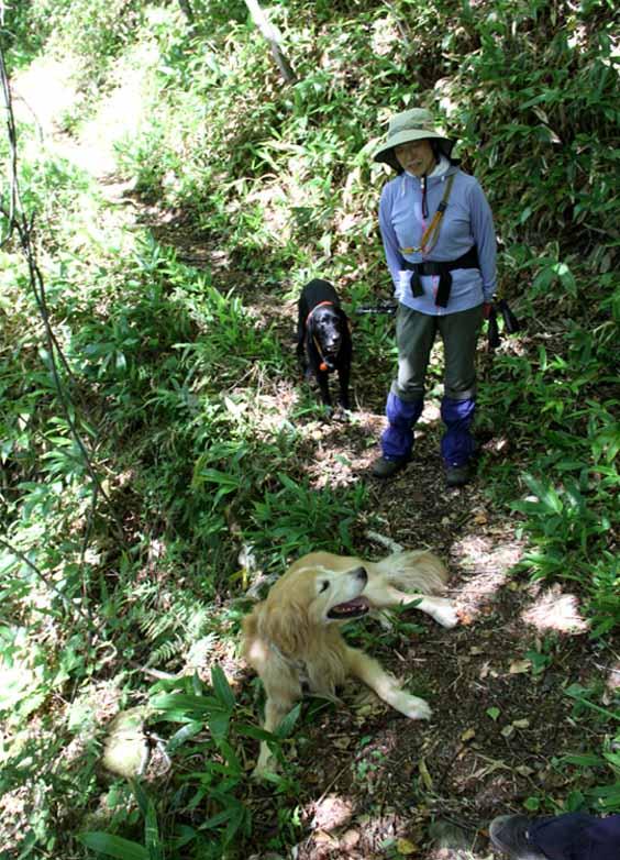 浅間山系捜索犬の旅(79)