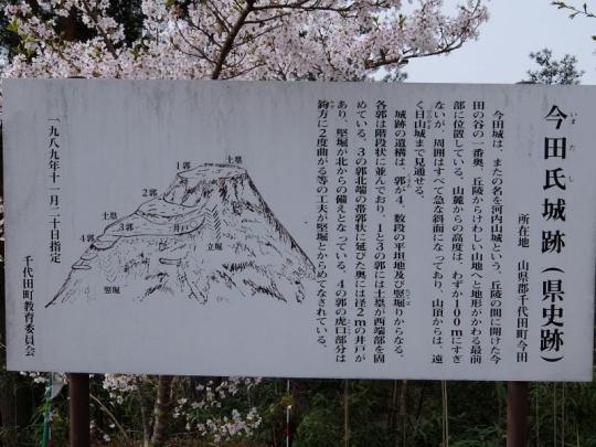 20150412_kobushi_021.jpg
