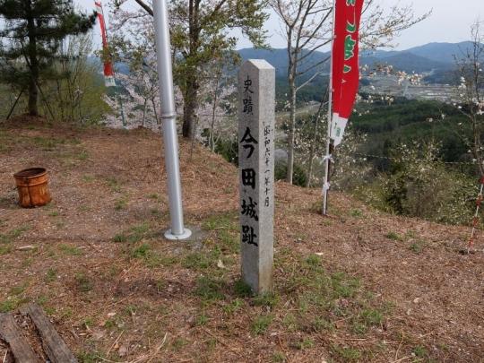 20150412_kobushi_022.jpg