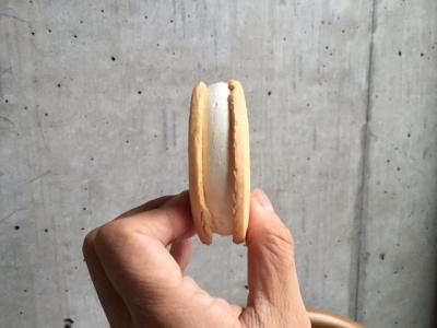 sandice5.jpg