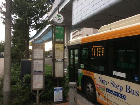 お台場バス停_151014