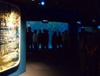 仙台うみの杜水族館8テーマフロア状況