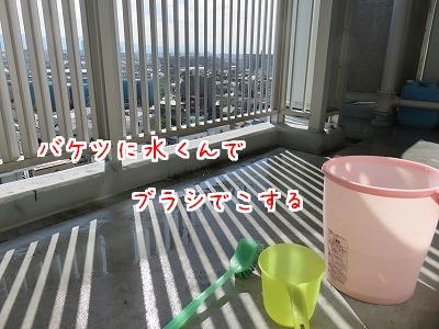 IMG_1118.jpg