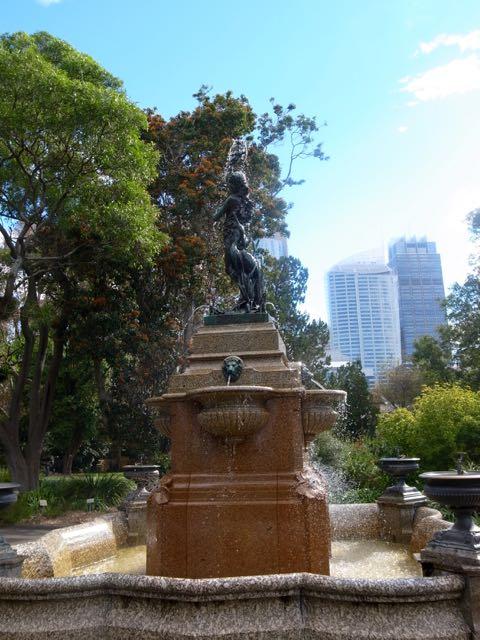 シドニー 王立植物園 - 1 (4)