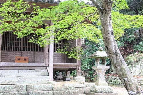 jiawa-0831-6752.jpg