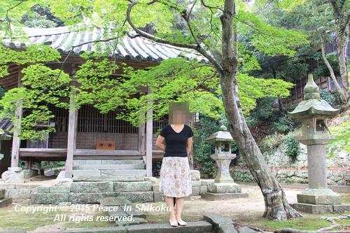 jiawa-0831-6753.jpg