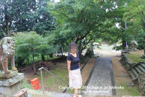 jiawa-0831-6767.jpg