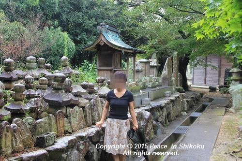 jiawa-0831-6771.jpg