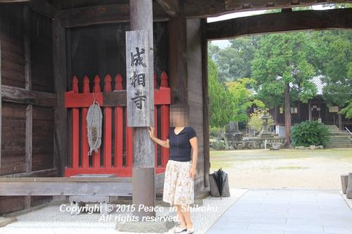 jiawa-0831-6791.jpg