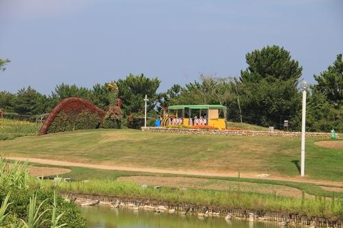 qwaji-0810-5817.jpg