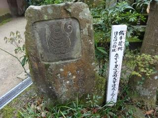 46浄瑠璃寺-仏手26