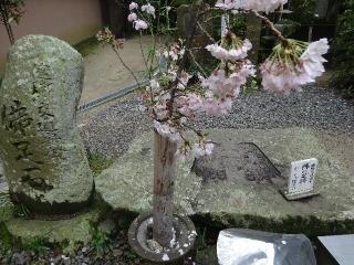 46浄瑠璃寺-仏足26