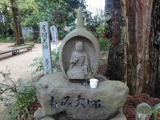 46浄瑠璃寺-籾26