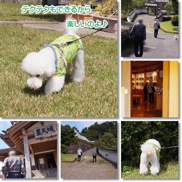 じぃちゃんと ふるさと旅行村2