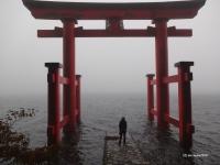 箱根神社 平和の鳥居2