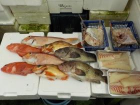 2鮮魚セット201593