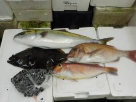 3鮮魚セット2015915