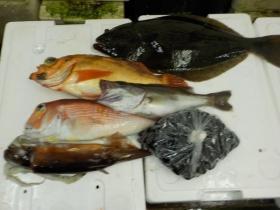 4鮮魚セット2015915