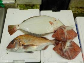 6鮮魚セット2015929