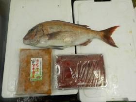 6鮮魚セット20151016
