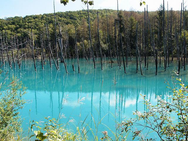 s-青い池8月