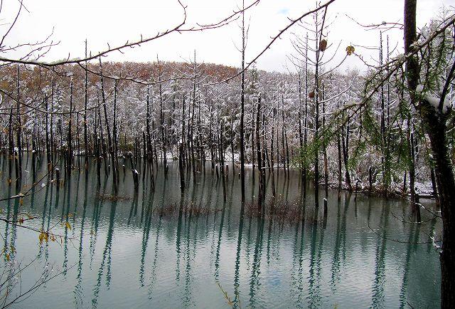 s-2015年10月14日青い池
