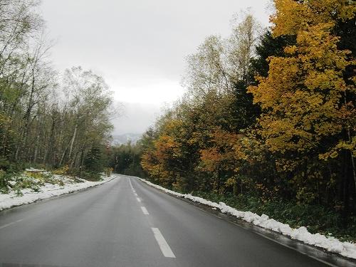 s-街道沿い