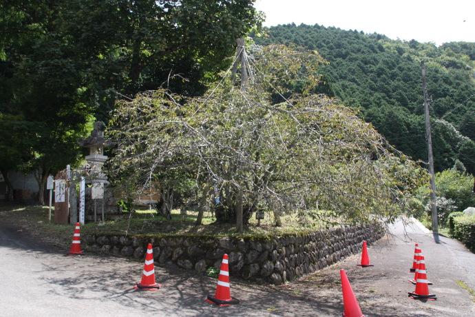 御形神社4