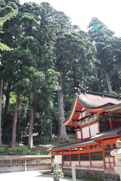 御形神社15