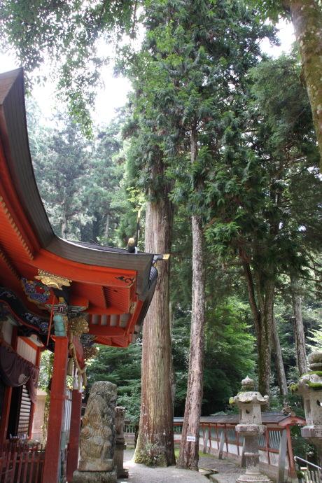 御形神社13