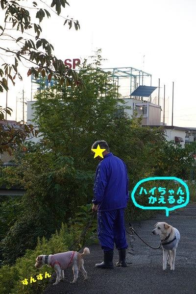 DSC01440.jpg