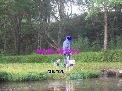 DSCF6834_20150826092110e96.jpg