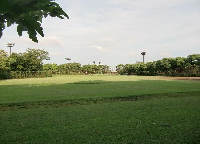 大井ふ頭中央海浜公園スポーツの森 野球場