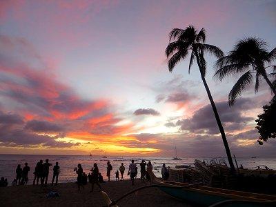 人も樹もKuhio Beachの夕闇シルエットdownsize