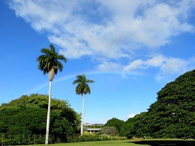 朝の空に虹がかかるdownsize