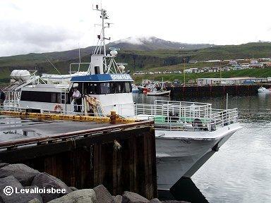 ホエールウォッチングの船は漁船かP1010183shipdw
