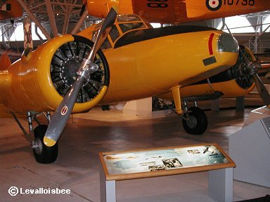 航法練習機型のAnson downsize
