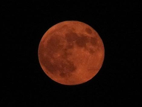 赤い月928
