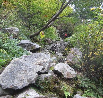 称名の滝 (2)