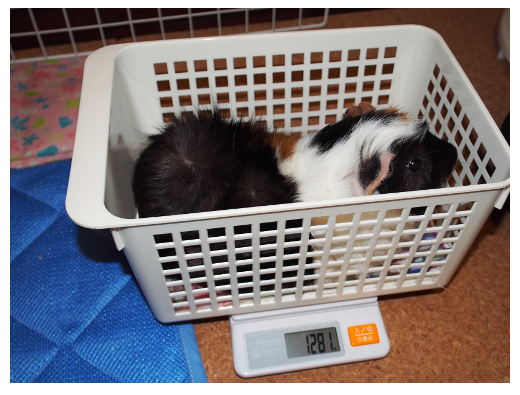 20150830weight4.png
