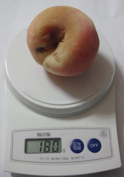 150906-甘々燦燦1