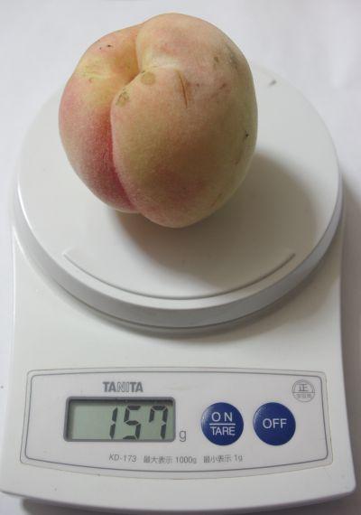 150907-桃水1