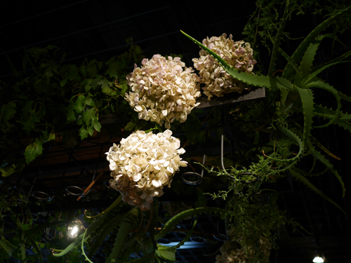 the flower apartment cafeにて