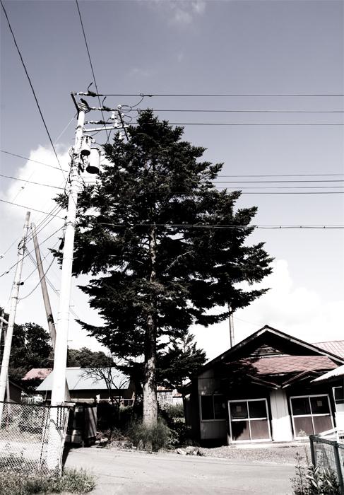 NIK_5718sss.jpg