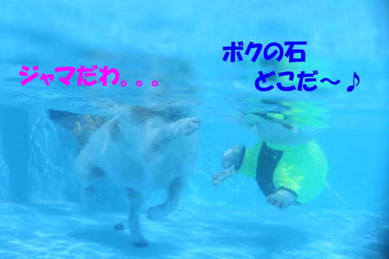 150901- (23)のコピー
