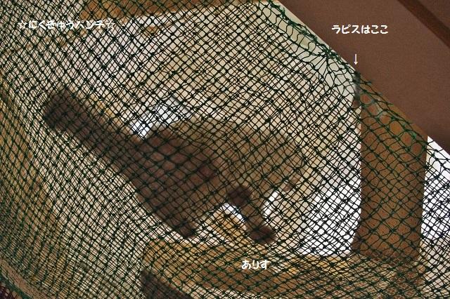 150929iIMGP7700.jpg
