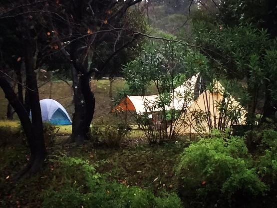 ヨーレイカ初張りキャンプ