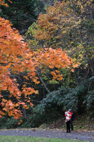 紅葉の恵庭