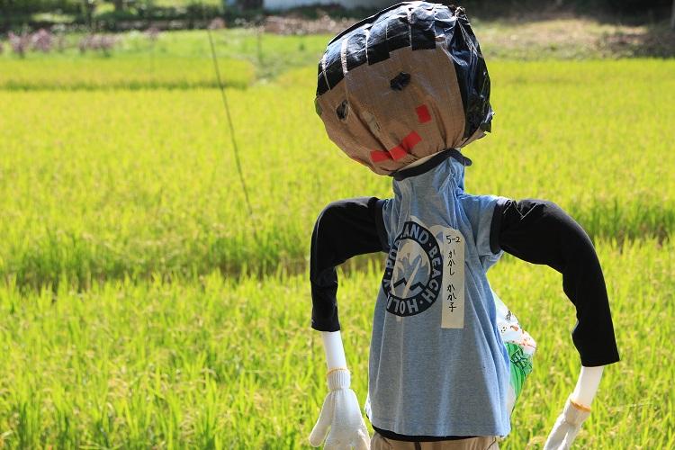 20150912寺谷ふるさと村6a