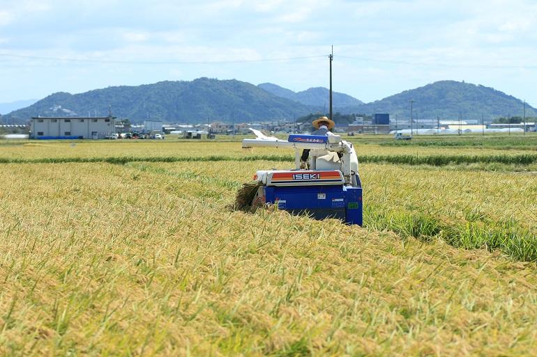 20150919近江八幡7a